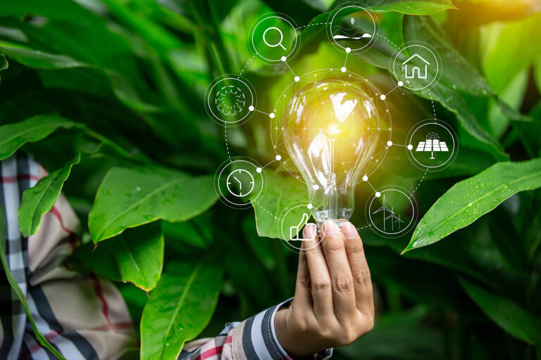 Imagem de lampada com Plantas