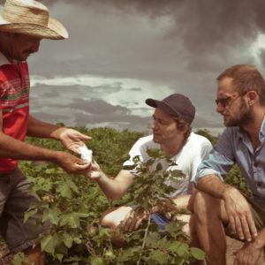 Os fundadores Kopp e Morillion com produtor de algodão no Ceará e a atriz Reese Whiterspoon com o tênis Veja: propaganda gratuita
