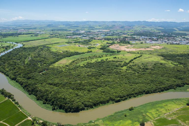 Recuperação de mata ciliar nas margens do Paraíba: reflexos positivos na produção agropecuária